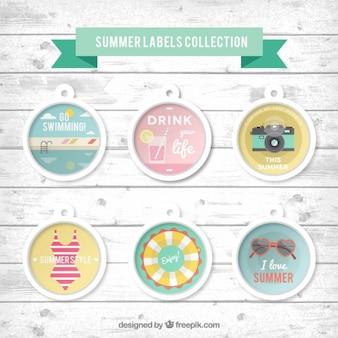 Etiquetas de verão ajustados com conchas