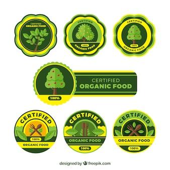 Etiquetas decorativas do alimento biológico com detalhes amarelos