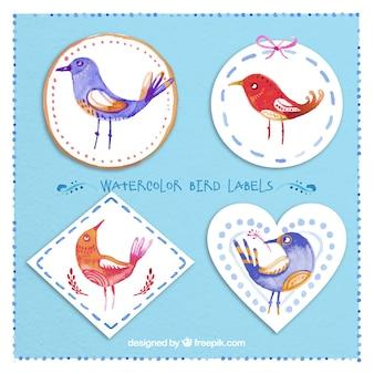Etiquetas do pássaro da aguarela