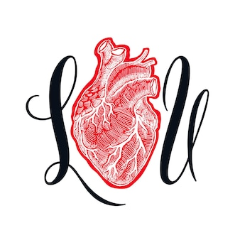 Eu amo você. lindo coração humano. ilustração desenhada à mão