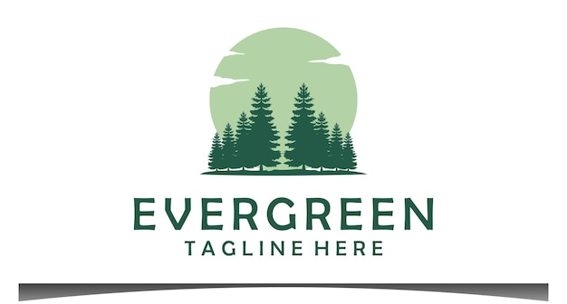 Evergreen pines spruce cedar trees design de logotipo