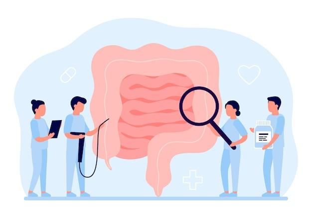 Exame médico de órgão intestinal, saúde intestino e digestivo médico examinando