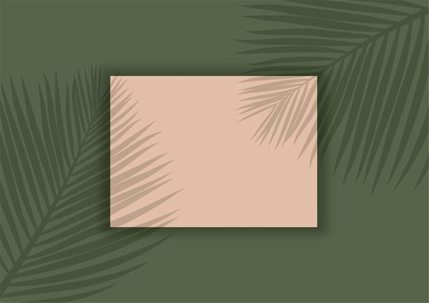 Exibir fundo com sobreposição de sombra de folhas de palmeira