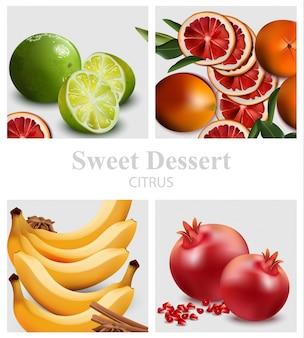Exotic fruits set vector realista. laranja, romã, limão e banana