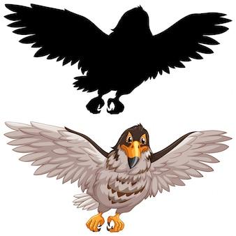 Falcão e sua silhueta