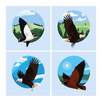 Falcões e águias pássaros na paisagem