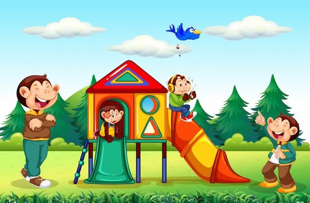 Família de macaco no playground