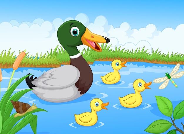 Família de pato dos desenhos animados