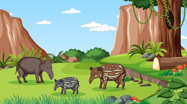 Família de tamanduás em cena de floresta com muitas árvores