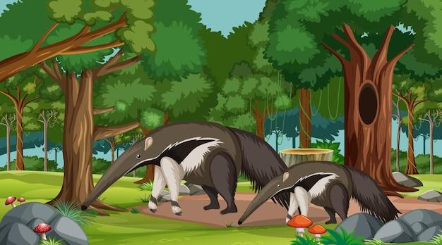 Família do tamanduá em cena de floresta com muitas árvores