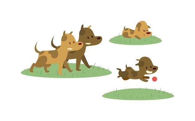 Família feliz andando com cachorro em campo verde