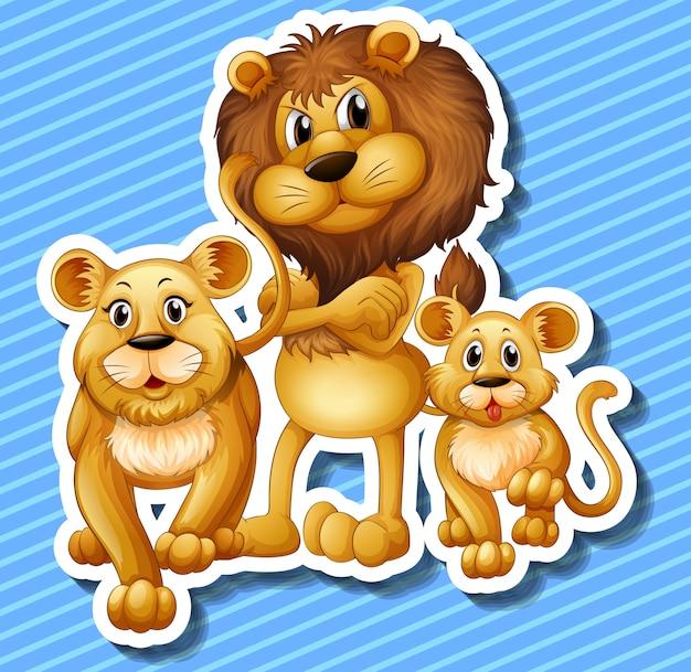Família leão, com, pequeno, filhote