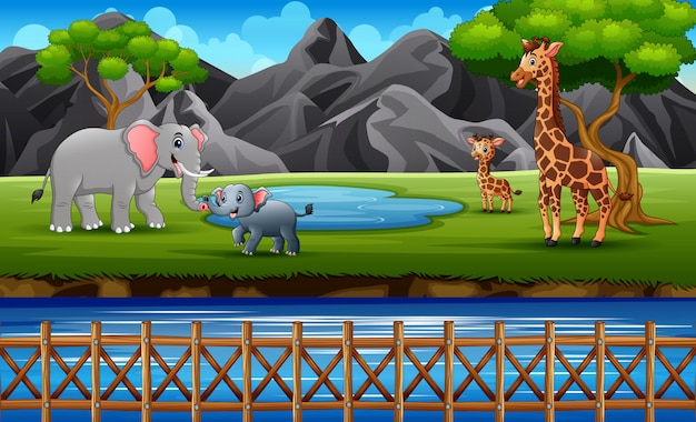 Famílias de animais selvagens desfrutando na floresta do zoológico aberto