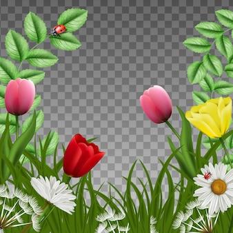 Fantasia fundo floral verde bonito moldura quadrada. com grama verde e tulipas cor de rosa com camomila, borboletas e joaninhas.