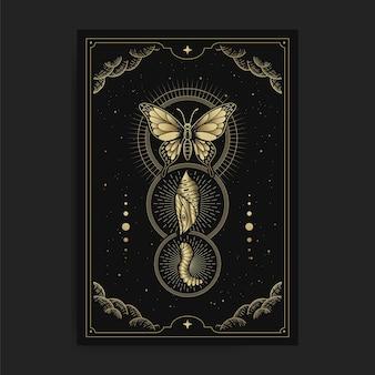 Fase de metamorfose de lagarta, casulo