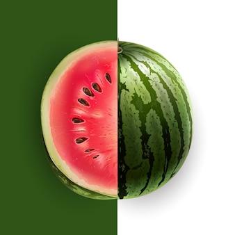 Fatia de ilustração de melancia