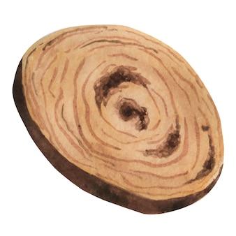 Fatia de madeira com textura de madeira aquarela