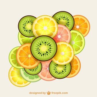 Fatias de frutas coloridas