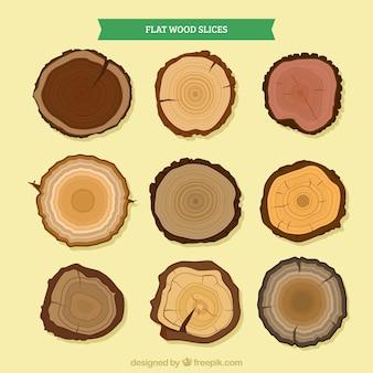 Fatias de madeira de diferentes tipos de árvores