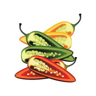 Fatias de pimenta jalapeça crua. ilustração vetorial