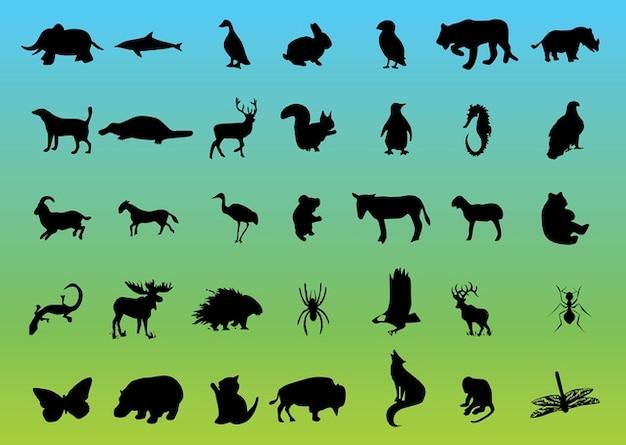 Fauna de vetores