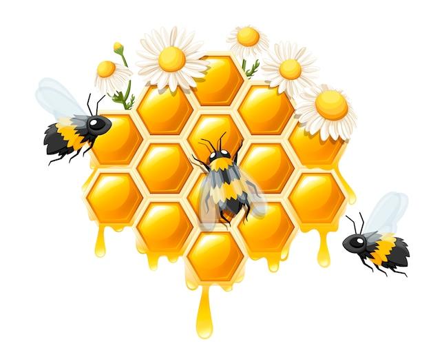Favo de mel com gotas de mel. doce mel com flores e abelhas. logotipo para loja ou padaria. ilustração em fundo branco