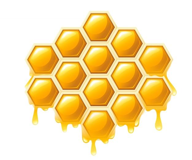 Favo de mel com gotas de mel. doce mel, logotipo para loja ou padaria. ilustração em fundo branco
