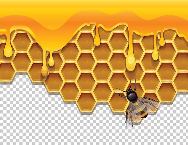 Favos de mel com mel líquido e uma abelha.