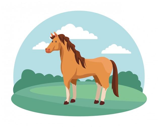 Fazenda, animais e agricultor dos desenhos animados