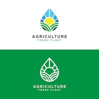 Fazenda de agricultura com sol e água fresca gota modelo conceito de logotipo