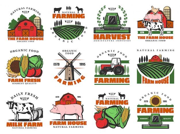 Fazenda de gado, agricultura que cultiva produtos de comida