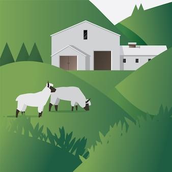 Fazenda de ovelhas com casa de fazenda plana