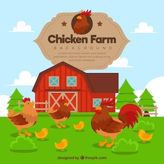 Fazenda, fundo, galo, galinhas