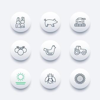 Fazenda, ícones de linha de fazenda, trator, colheitadeira, galinha, porco, colheita, ícones modernos de vegetais, ilustração vetorial