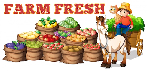 Fazenda produtos frescos e agricultor