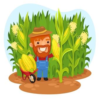 Fazendeiro de colheita em um campo de milho