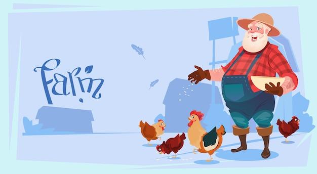 Fazendeiro feed chicken criando hen for food farm