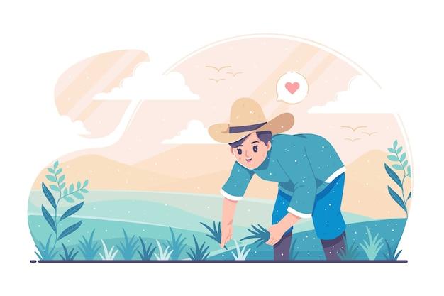 Fazendeiro plantando em campos de arroz.