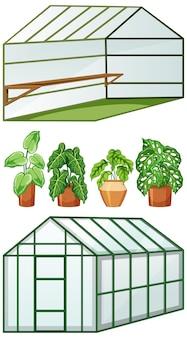 Fechar e abrir a vista de uma estufa vazia com muitas plantas em vasos