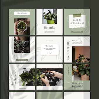 Feed de quebra-cabeça botânico do instagram