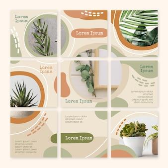 Feed de quebra-cabeça instagram de plantas internas