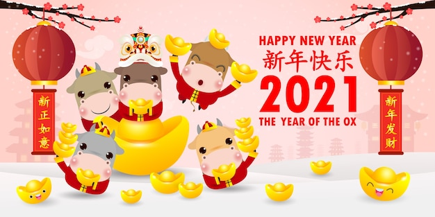 Feliz ano novo chinês 2021, pequena dança do boi e do leão segurando lingotes de ouro chineses, o ano do zodíaco boi, vaca fofa calendário dos desenhos animados isolado, tradução feliz ano novo chinês