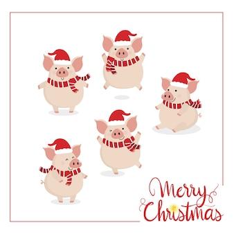 Feliz natal com porco fofo.