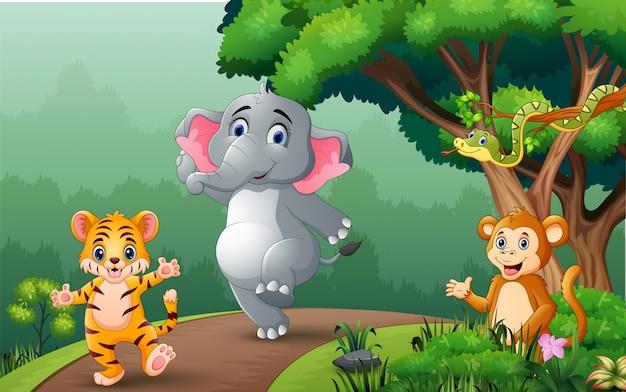 Felizes animais selvagens caminhando na estrada