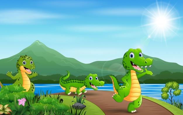 Felizes três crocodilos caminhando na estrada