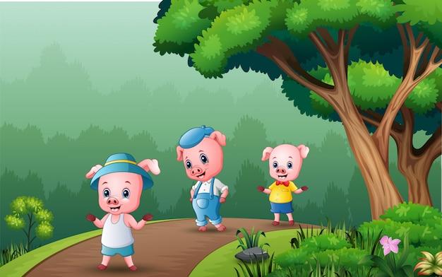 Felizes três porcos caminhando na estrada da floresta