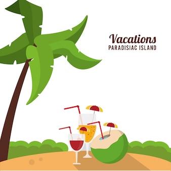 Férias ilha paradisíaca praia cocktails palma