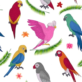 Férias tropicais sem costura padrão com papagaios exóticos e flores