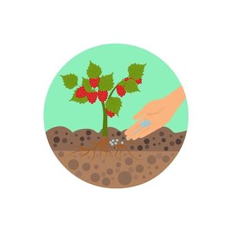 Fertilizante granulado em ilustração vetorial de solo