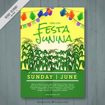 Festa junina folheto com colheita